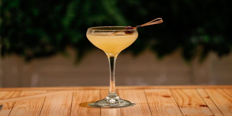 martini glass cocktail on wooden table