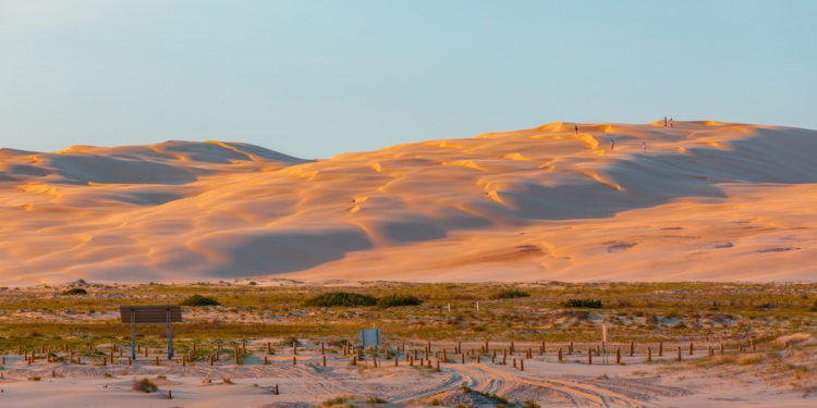 White sand dunes at sunset. Anna Bay, New South Wales. Image by Greg Brave via Shutterstock.