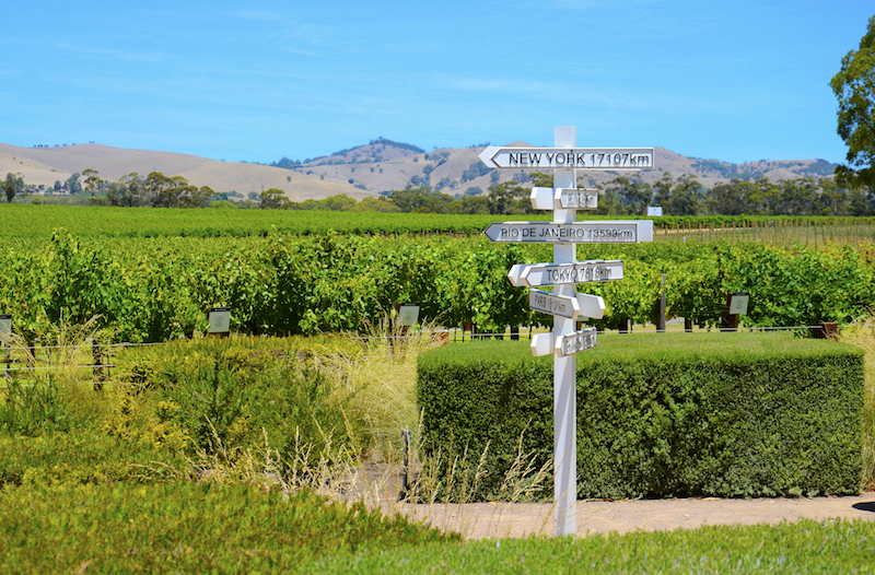 Jacobs Creek Winery. Image by Milleflore Images via Shutterstock.