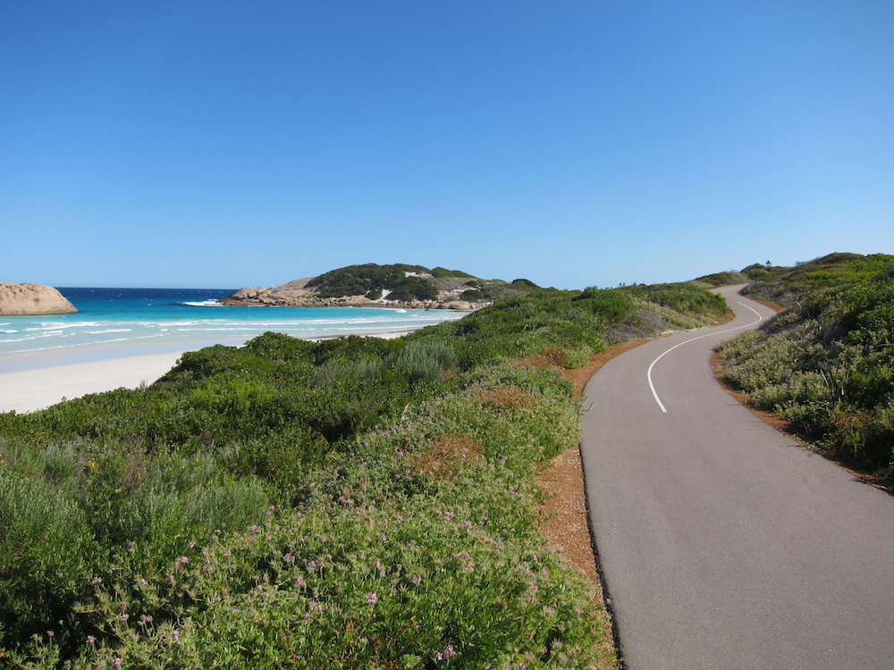 Photo of the Road on the Great Ocean Drive