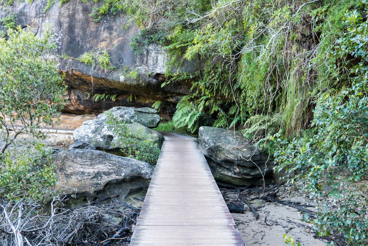 Manly to Spit Bridge walk. Image: lrosebrugh / Shutterstock