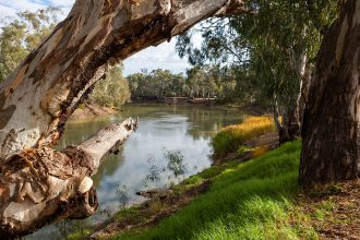 The Murray River. Image via Darrell Leach. Image purchased.