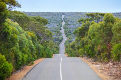 Road through Flinders Chase National Park on Kangaroo Island. Image: Rodrigo Lourezini
