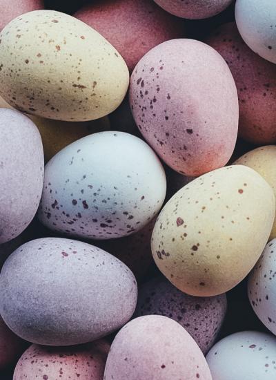 Easter Chocolates. Photographed by Annie Spratt. Image via Unsplash
