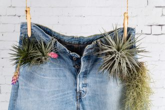 Denim jeans with plants. Photographed by Ovnigraphic. Image via Shutterstock
