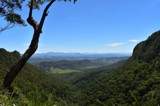 Lamington National Park. Photographed by Madeline Paulsen. Image supplied via Hunter and Bligh