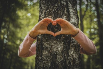 Love tree environment. Photographed by Happy Max. Image via Shutterstock