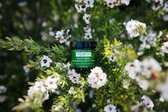 Antipodes Manuka Honey Day Cream product shot in bush