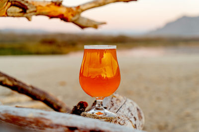 Australian-made craft beers. Photographed by George Cox. Image via Unsplash