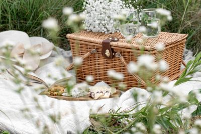 The 10 Best Picnic Essentials for Spring 2021. Photographed by Evangelina Silina. Image via Unsplash